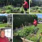 David's Garden is in Full Bloom!